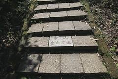 IMG_1320 (少東 兄) Tags: 爬山 福星 四獸山 虎山 獅山 豹山 象山 台北101