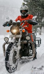 Snow Storm 2017, Uttrakhand, India (touragrapher) Tags: bullet dharali gangnani harshil himalayas himalyan mountains offroader royalenfield snow snowstorm2017 snowstorm thunderbird uttarkhashi uttrakhand uttrakhandtourism whereeaglesdare remotestcorners tourer