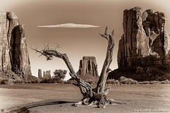 Antiquity (Rob Reaburn Photography) Tags: monumentvalley arizona utah buttes landscape sepia ancient navajo gnarled weathered grand geology spectacular antiquity blackandwhite breathtakinglandscapes