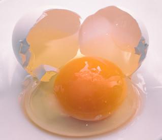345 Egg