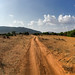 Samburu Kenya-50.jpg