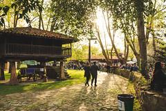 VIII-Primer-Sidre-lAñu-Primera-Sidra-Año-gijon-asturias-pueblo-asturiano-11 (coudlain) Tags: sidra sidre puebloasturiano gijon asturias pueblo festival espicha tonel xixon