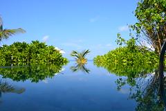 Milaidhoo Resort Maldives (Simon_sees) Tags: reflection pool maldives luxury lixurylife holiday vacay vacation travel island tropical