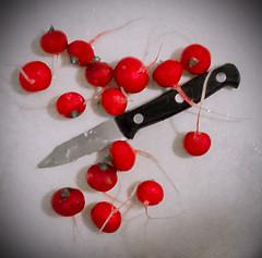 kitchen prep (dotintime) Tags: kitchen prep knife chop slice pare radish vegetable crisp food red white black dotintime meganlane