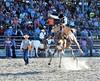 P3110193 (David W. Burrows) Tags: cowboys cowgirls horses cattle bullriding saddlebronc cowboy boots ranch florida ranching children girls boys hats clown bullfighters bullfighting