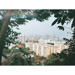 A day to Mount Faber Park (花柏山) Date : 25/03/2017 (Saturday) (rOnG^eR) Tags: singapore 新加坡景點 新加坡 花柏山 singaporeattraction mountfabersingapore mountfaberpark mountfaber applerongerphotography 花巴山