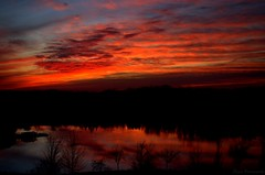 Embrace the colors of Nature (Captions by Nica... (Fieger Photography)) Tags: weather sunset sunsets dusk clouds cloud serene sky skyscape skyline skies outdoor nature trees silhouettes silhouette colorful colors bright quebec canada