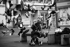 wet nurse (sergeyr10) Tags: people photojournalism portrait pigeon streetphotography street outdoor monochrome social urban human blackandwhite bw elderly documentary