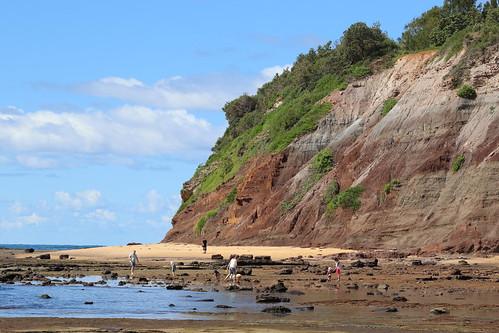 Long Reef, Sydney Australia