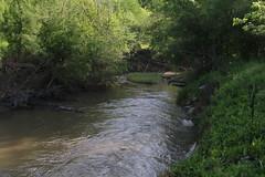 Escondido Creek_6073 (gosdin) Tags: tceq wwtf cwa sampling bacteria 303d listed
