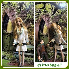Another LL Character... Marianne (Land of Dolls) Tags: frodobaggins hobbit 16thscale dolls diorama backdrop misaki amelie greenery woodendoor fairytale stories laurenland forest