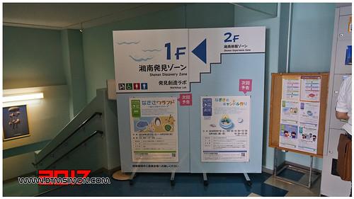 新江之島水族館44.jpg