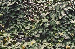 Bicycle Remains (Jon-Fū, the写真machine) Tags: jonfu 2017 olympus omd em5markii em5ii em5mkii em5mk2 em5mark2 オリンパス mirrorless mirrorlesscamera microfourthirds micro43 m43 mft μft マイクロフォーサーズ ミラーレスカメラ ミラーレス一眼カメラ ミラーレス機 ミラーレス一眼 snapseed japan 日本 nihon nippon ジャパン ジパング japón जापान japão xapón asia アジア asian orient oriental aichi 愛知 愛知県 chubu chuubu 中部 中部地方 nagoya 名古屋 栄 sakae bicycle bicycles 自転車