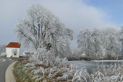 P1000241 (oberbayer) Tags: schnee baum winter spargel kapelle weiher frost