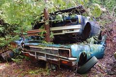 IMG_2638 (Irina Souiki) Tags: rusty crusty cars mcleansautowreckers milton ontario old oldcars