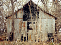 lost in the woods (Jayne Reed) Tags: barns kansas