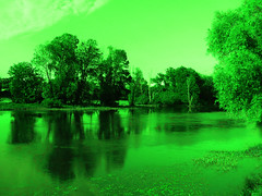 Green water (François Tomasi) Tags: couleur color yahoo google flickr green vert françoistomasi france touraine tours villedetours europe indreetloire water eau loire fleuve reflection arbres arbre trees tree pointdevue pointofview pov lights light nikon reflex photo photoshop photography photographie filtre filtrephoto avril 2017 lumières lumière