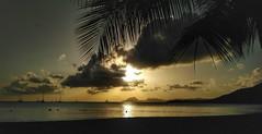 IMG_20170406_174259-01 (Ciscobolo) Tags: wonderfulworld martinique sunset beach paradise palms sea caribbean magiclight ciscophoto clouds eden green nature