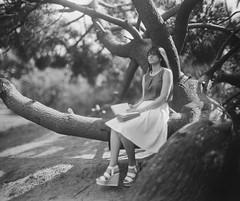 (Attila Pasek) Tags: 8inchf29 8x10 ilford ortho vds vdscameramanufactory bw bokeh book film girl largeformat pentac portrait read reader tree woman