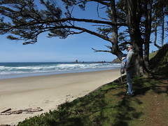 last looks before the up (carolyn_in_oregon) Tags: crescentbeach cannonbeach pacificocean ecolastatepark coast jacob al allie