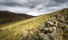 Harthope valley (Sheldrickfalls) Tags: harthopevalley focusstacking wooler northumberland england