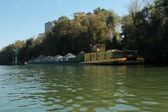 Gtermotorschiff Bern ( Rheinschiff - Schiff - Bateau - GMS => Lnge 94.86m => Baujahr 1982 =>  Redderei Ultra-Brag AG Basel => Europanummer 07001319 ) auf dem Rhein ( Hochrhein - Fluss - River ) unterhalb Rheinfelden im Kanton Aargau der Schweiz (chrchr_75) Tags: chriguhurnibluemailch christoph hurni schweiz suisse switzerland svizzera suissa swiss chrchr chrchr75 chrigu chriguhurni 1410 oktober 2014 albumzzzz141019rheinrheinfeldenbirsfelden hurni141019 oktober2014 gtermotorschiff gms gmsbern frachtschiff rheinschiff schiff bateau rhein hochrhein fluss river albumschiffeaufdemhochrheininderschweiz ship rhin reno rijn rhenus rhine rin strom europa albumrhein joki rivire fiume  rivier rzeka rio flod ro