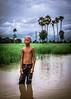 Standing Tall (Trent's Pics) Tags: boy green kids palms cambodia flood palmtrees fields farmer ricefields fieldworker kampongchhnang