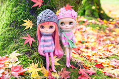 Blythes in the woods