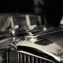 Swiss Classic British Car 2014 - 1 (M a r c O t t o l i n i) Tags: bw 6x6 film monochrome zeiss square switzerland suisse kodak tmax nb mf bentley tmax100 carré planar polarizingfilter hasselblad500cm vuescan epsonv700 epsonperfectionv700 filtrepolarisant planar2880mm marcottolini swissclassicbritishcarshow