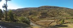 Terraced Fields (Craigs Travels) Tags: africa farm fields ricefields madagascar n2 terraced