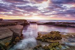 Pastel Morning (Kristin Repsher) Tags: longexposure clouds sunrise nikon df australia queensland algae sunshinecoast buddina kawana southeastqueensland pointcartwright