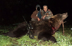 "Bear Hunting in Estonia • <a style=""font-size:0.8em;"" href=""https://www.flickr.com/photos/61427906@N06/15362523928/"" target=""_blank"">View on Flickr</a>"