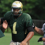 Robert Nkemdiche Photo 10
