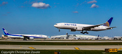United Boeing 777-200 & ANA Boeing 777-300 (Doctor Christopher) Tags: ana boeing unitedairlines boeing777 boeing777300 allnipponairways chicagoohareinternationalairport boeing777200