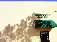 Day #10:  Starbucks (skyisthelimit39) Tags: inspiration fan starbucks 365 ho