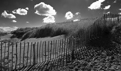 Shifting Sands (scrimmy) Tags: blackandwhite beach monochrome landscape scotland dundee standrews westsands