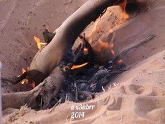 #شبة #ضو #شعيب #الطوقي #مكشات #كشته @abumashari & @x3abrr #videoshowapp #video #فيديو #حطب #wood #fire #make by @videoshowapp #videoshowapp make by @videoshowapp (Instagram x3abr twitter x3abrr) Tags: wood make fire video كشته شبة ضو حطب فيديو شعيب مكشات الطوقي videoshowapp