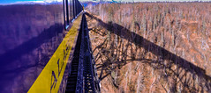 Hines Bridge, Train and Shadow (Dr_Moriarty) Tags: railroad bridge mountains alaska train unitedstates ak alaskarailroad 2014 denalinationalparkandpreserve denalinationalparkandpreserv