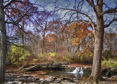 woods_stream_b_wg_102814 (F J R) Tags: autumn trees fall leaves stream challengeyouwinner
