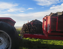 Lois Morrison, Red Tractor, winner of the Junior Photography Competition