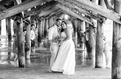 Bridal party under the pier
