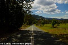IMG_6427 (beverleywhite123) Tags: park trees light tree nature clouds contrast canon landscape nationalpark australia bluesky roadtrip hike national passion qld queensland springbrook hobbie 600d