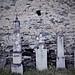 Studenica Monastery  / Old Thumb stones