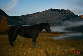 October Mist...