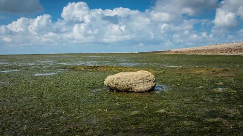 Stone Alone (16:9)