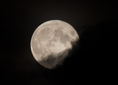 Full Moon (C) Oct 2014