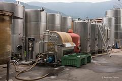 DSC04606_s (AndiP66) Tags: italien autumn italy cortina sony herbst winery alpha alto südtirol southtyrol adige northernitaly tenuta norditalien andreaspeters kurtinig trentinosüdtirol 77m2 kurtiniganderweinstrase a77ii ilca77m2 77ii 77markii slta77ii