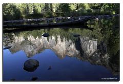 Yosemite Valley (Aithal's) Tags: composition digital canon reflections creativity eos yosemite 7d canoneos murali canondigital 18135 18135mm aithal canon18135mmis canon7d aithals wwwmuraliaithalcom canon18135mmisusm yosemitevallery