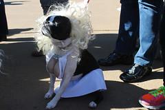 norma jeane (istolethetv) Tags: nyc newyorkcity dog eastvillage newyork photo foto image awesome snapshot picture photograph  animale yorkville dogrun uppereastside howloween  carlschurzpark halloweencostumes halloweendogs dogcostumes dogcostume halloweendog halloweendogparade costumeddog dogwearingclothes newyorkdogs halloweenhowl windupdog doginacostume decoratedanimal doghalloweencostumes halloweendogcostume canetravestito caneincostume halloweencostumesfordogs halloweendogcostumecontest windupdogcostume doginahalloweencostume carlschurzparkhalloweendogparade carlschurzparkhalloweendogparade2014 carlschurzparkhalloweenhowl2014