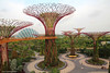 Cloud Forest Dome & Supertrees Grove Aerial Boardwalk, Gardens By The Bay, Singapore (Black Diamond Images) Tags: trees nature gardens architecture garden singapore fantasy attractions marinabay bestofsingapore singaporecity singaporelandmarks gardensbythebay singaporegardens marinabaysands tourismattraction supertrees gardenssingapore supertreegrove gardensbythebaysouth supertreesgrove aerialboardwalk iconiclandmarksofsingapore worldsbestgardens supertreegroveaerialboardwalk